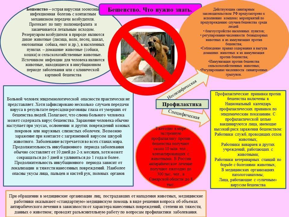 Лосино-Петровский медицинские центры при фгуз медицинские книжки